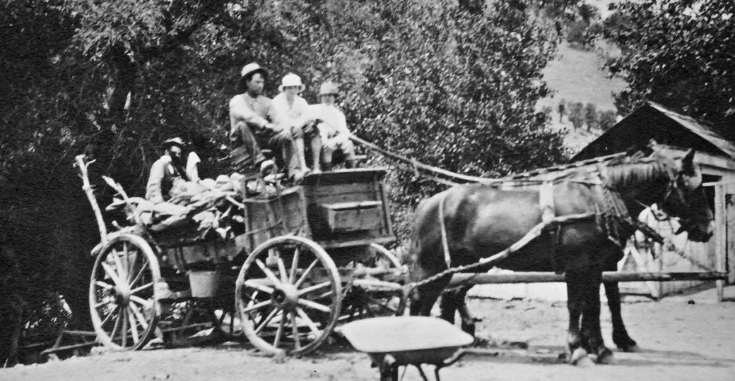 Photo: old black and white of Sinton family with horse and wagon